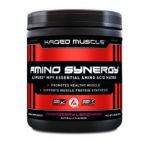 Amino Synergy Ajipure 195g