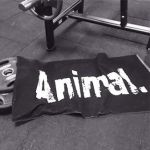 Animal Gym Towel 50x100cm