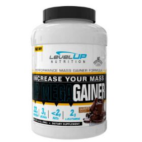 UP Mega Gainer 2kg