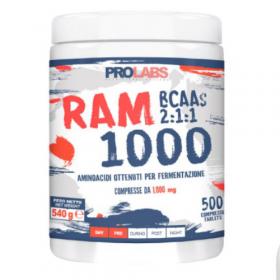 Bcaa 1000 Ram 500cps prolabs