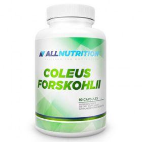 Coleus Forskohli 90 cps