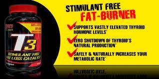 t3 fat loss integratore alimentare di guggulsteroni titolati al 99%, ottimo per accelerare il dimagrimento